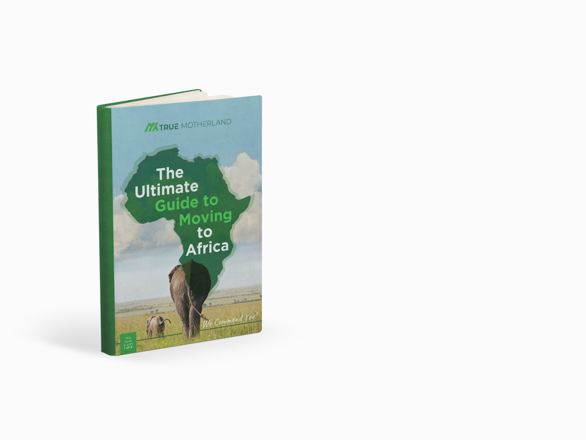 The Ultimate Guide to moving to Africa